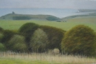 23 'Sussex Downs with Belle Tout lighthouse' pastel 20 x 35 cm 2004