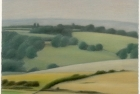 26 'Sussex Downs nr East Dean study II' pastel 20.5 x 23 cm 2000 (Private collection)