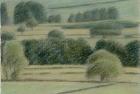 30 'Wensleydale near Constable Burton study' pastel 12.5 x 20 cm 1994
