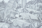 2 'Stewart Park Conservatory' pencil 37 x 39 cm 1993
