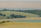 25-sussex-downs-near-east-dean-study-i-pastel-10-5-x-23-5-cm-2000-private-collection