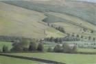 29 'Raydaleside' pastel 63 x 96 cm 1995