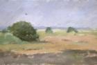 OL082 'Waldridge Fell, Durham' oil on canvas 15 x 25 cm 1986