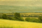 OL124 'Bedale study' oil on canvas 9 x 15 cm 1994 (Private collection)