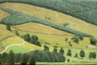OL127 'Raydaleside' oil on canvas 12 x 24 cm 1995 (Private collection)