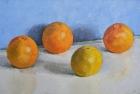 OSL091 Grapefruit 27.5 x 45.5 cm 1994