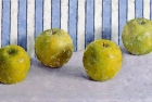OSL096 'Apples' oil on canvas 20 x 40 cm 1996 (exhibited RA Summer Exhibition)