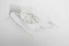 DF65 'Life study' pencil drawing 50 x 35 cm 2004