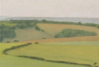 17 OL163 'Sussex Downs near East Dean study' oil on canvas 15 x 20 cm 2010