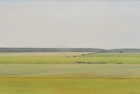 2 OL203 'Sussex Downs near Beachy Head' oil of canvas 23 x 50.5 cm 2016