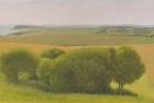 15 OL177 'Birling Gap from Beachy Head' 30 x 50 cm 2011