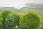 28 OL142 'Sussex Downs near Birling Gap' 46 x 51 cm 2006