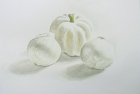 2 'White gourd and onions' watercolour 30 x 40 cm 2017