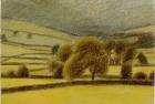 Wensleydale near Semmer Water' pastel 13 x 18 cm 1994