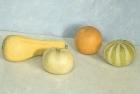 OSL076 Gourds