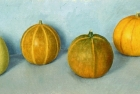OSL082 '4 gourds II' oil on canvas 19 x 45 cm 1994 (Private collection)