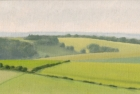 30 OL135 'Sussex Downs nr East Dean' oil on canvas 15 x 29 cm 2003 (Private collection)
