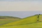 6 OL199 'Birling Gap from Warren Hill' oil on canvas 20 x 35 cm 2015