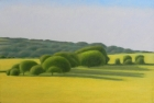 9 OL194 'Warren Hill from Beachy Head' oil on canvas 20 x 30 cm 2015
